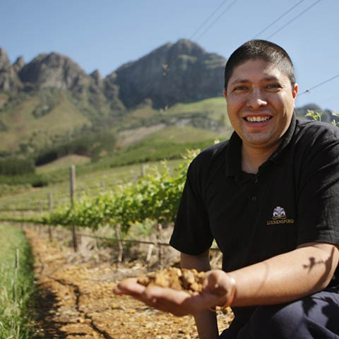 Timothy Witbooi, Winemaker