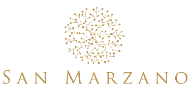 Buy San Marzano wines online | Vinexus Shop